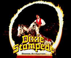 Dixie stampede coupon code 2019